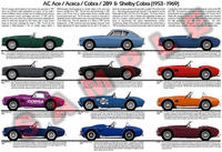 AC Ace / Shelby Cobra / Aceca evolution chart