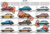 AMC Pacer car poster 1975 to 1980 D/L X Package Limited